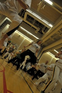 capoeira-meeting-copenhagen-2010-0231